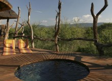 madikwe safari lodge-CON10734