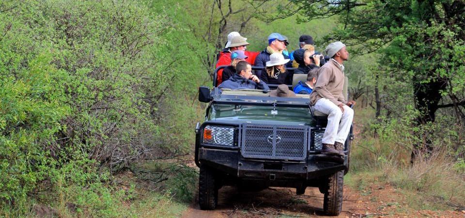 safari-kruger